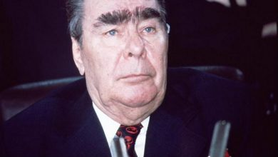 What can Brezhnev's eyebrows say about his character? Why did Leonid Brezhnev have such eyebrows?